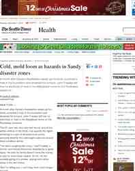 Cold mold loom as hazards in Sandy disaster: Seattle Times